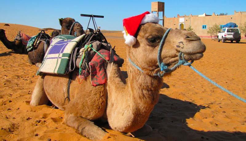 Natale in Marocco - Le Feste di Natale nel Deserto