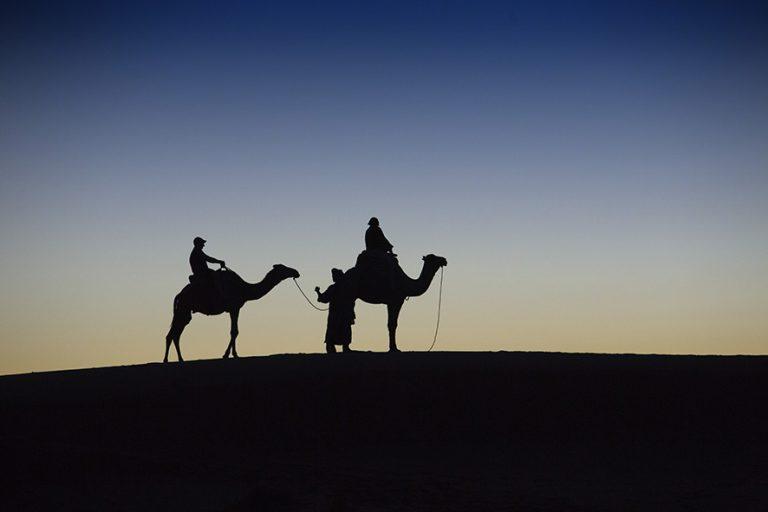 Sagome berberi su dromedari