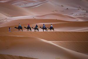 Camel Trek nel Deserto